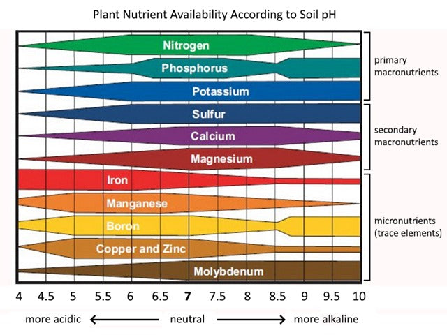Plant Nutrient Availability According to Soil pH