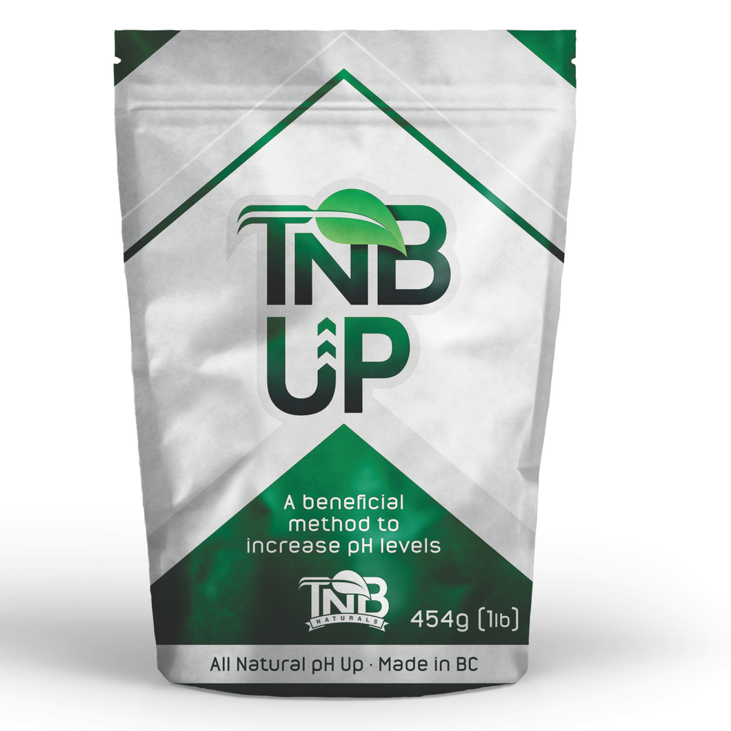 TNB Naturals granular pH UP 1lb / 454g