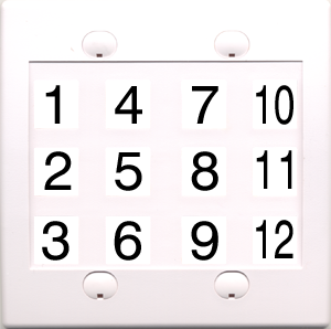 Custom 2 Gang White Wall Plate with 12 Keystone Ports