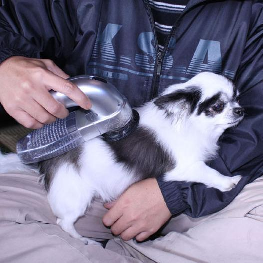 Portable Pet Hair Vacuum