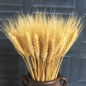 Real Wheat Ear Flower Decoration Bouquet