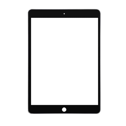 Apple iPad 10.2 Touch Digitizer