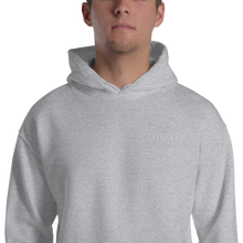 Load image into Gallery viewer, EMBROIDERY TECHNO HOODIE