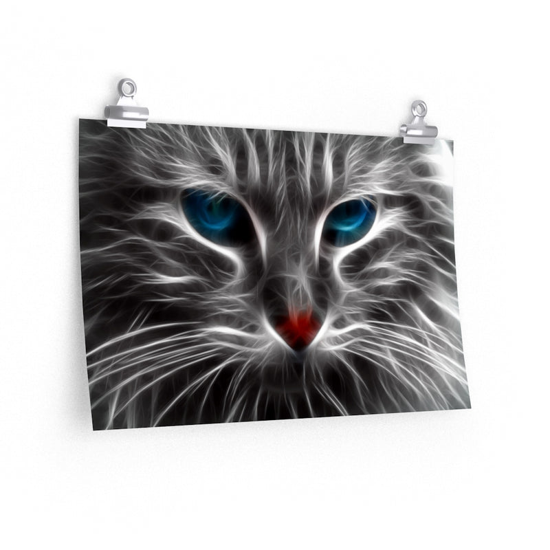 Cool Blue Eyes Cat Poster 3