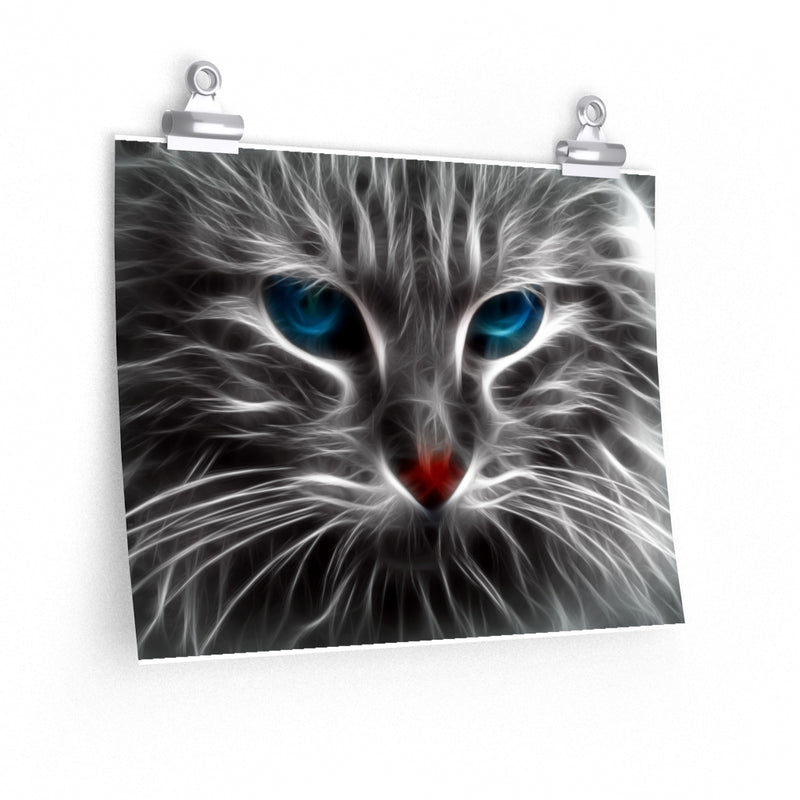 Cool Blue Eyes Cat Poster 2