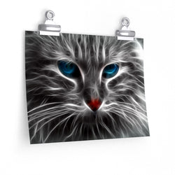 Cool Blue Eyes Cat Poster 1