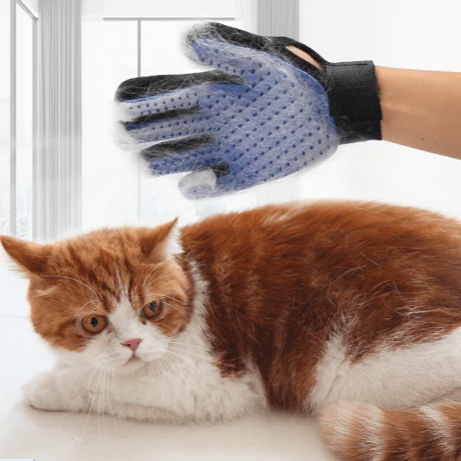 Cat Grooming Brush Glove - With Cat