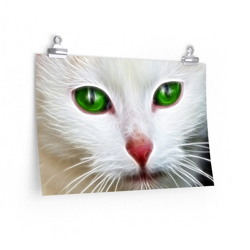 Green White Cat Eyes Poster 3