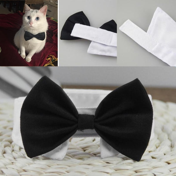 Adjustable Cat Bow Tie - Black With Cat