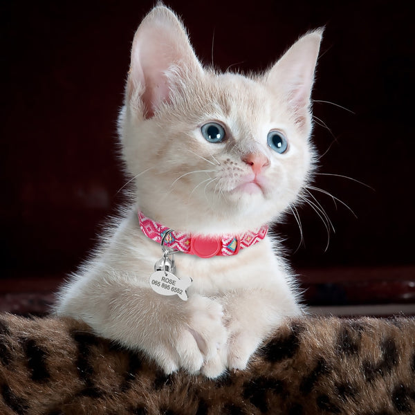 Personalized Kitten Collars with Bell - Pink Type 1