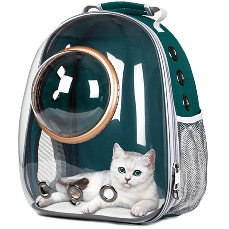 New Transparent Astronaut Cat Carrier - With Cat Inside
