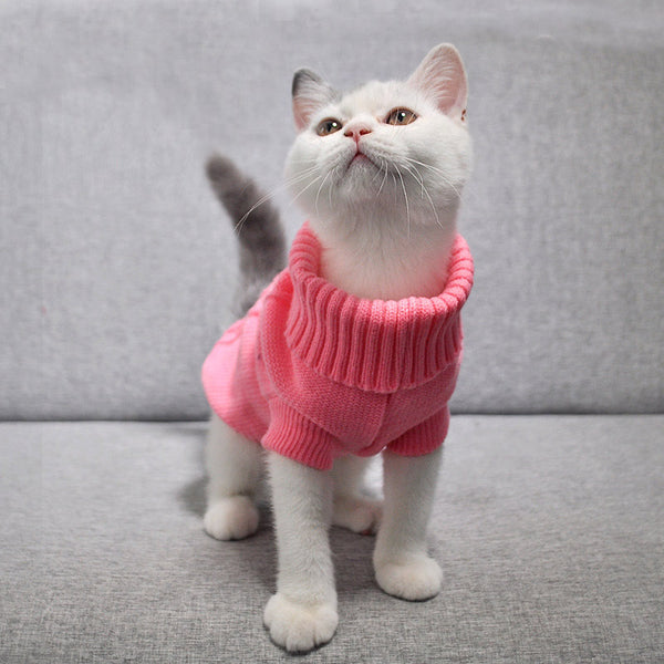 Stylish Cable Knit Sweaters - With Cat
