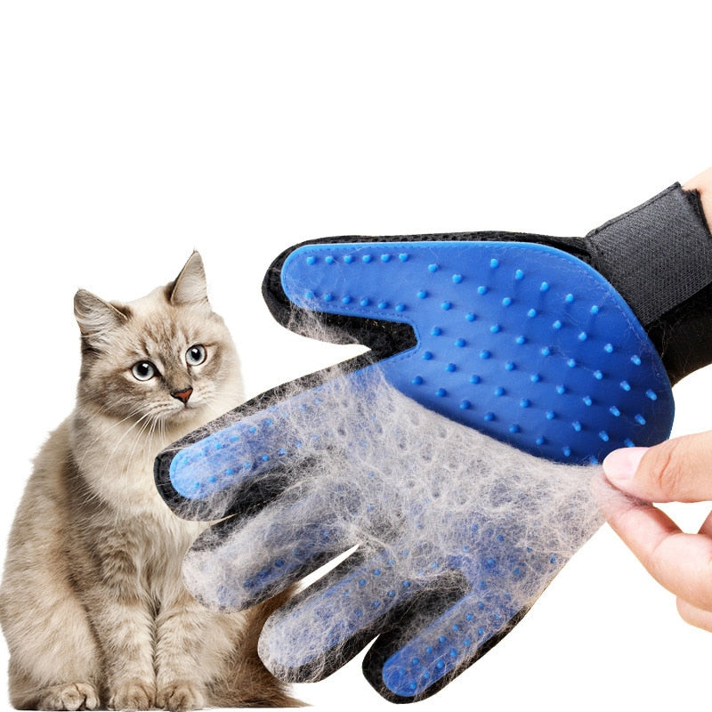 Cat Grooming Brush Glove - With Cat 2