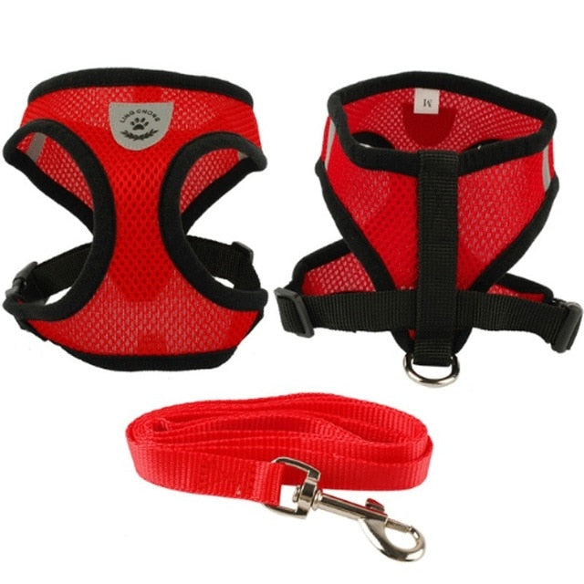 Outdoor Cat Harness and Leash - Red Colour