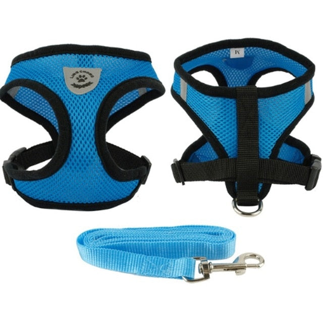 Outdoor Cat Harness and Leash - Blue Colour