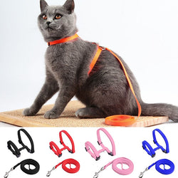 Stylist Cat Harness and Leash - All Colours