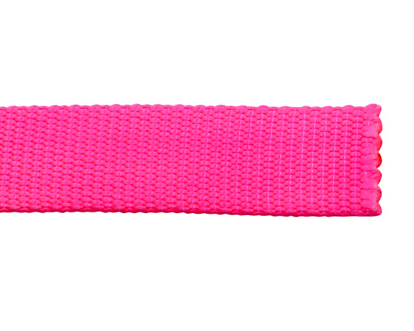 Nylon Pet Webbing (4-850)