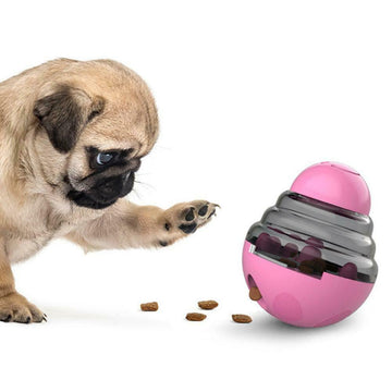 Why You Need To Get Interactive Pet Feeding Toys Today!!