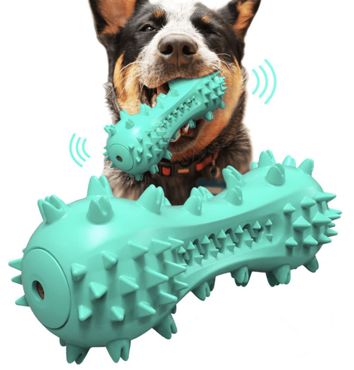 Squeaky Toothbrush Chew Toy - Pet Play Co