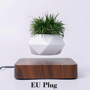 Amazing Modern Designed Levitating & Rotating Planter Flower Pot - GoinsShop