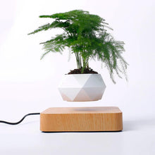 Load image into Gallery viewer, Amazing Modern Designed Levitating & Rotating Planter Flower Pot - GoinsShop
