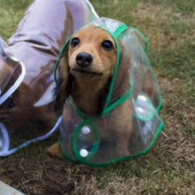 Load image into Gallery viewer, Transparent Dog Raincoats Hood Poncho - GoinsShop