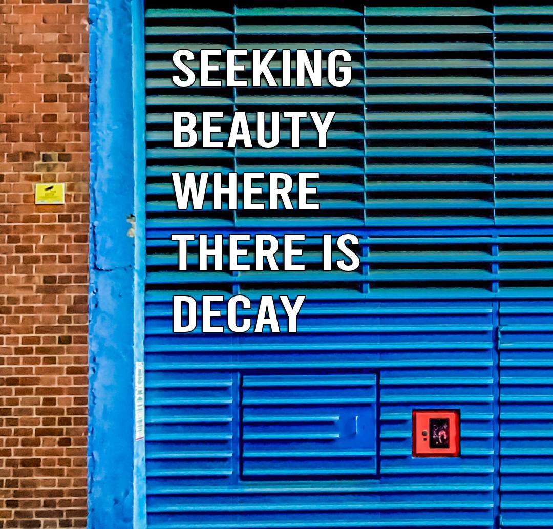 Seeking beauty where there is decay