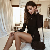 Elegant Turtleneck Slim Mini Dress