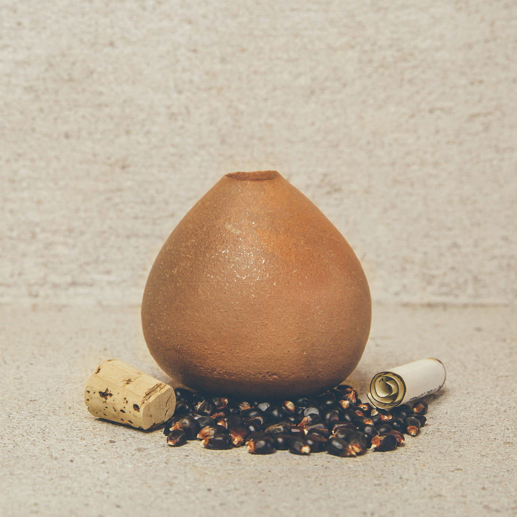 Seed Pot With Corn Seed