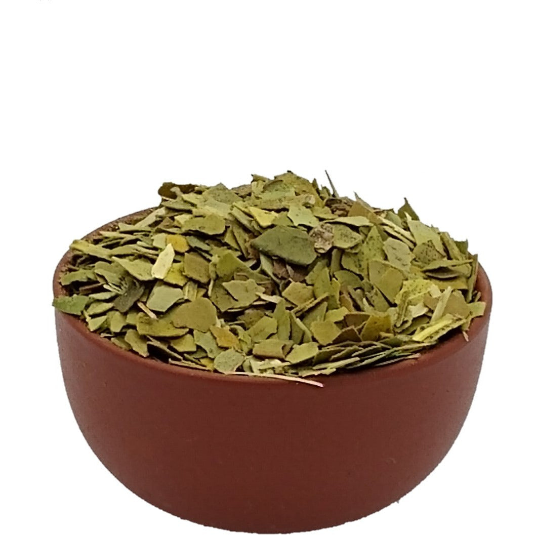 Yerba Mate - South American Plant