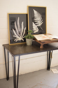Set of 2 Black and White Fern Prints Under Glass