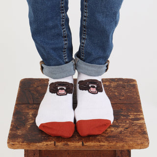 Men's Low Cut Angry Bear Cotton Socks