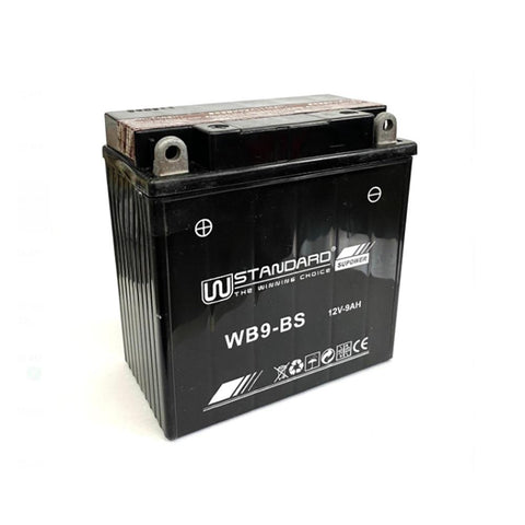 WB9-BS W-Standard Battery