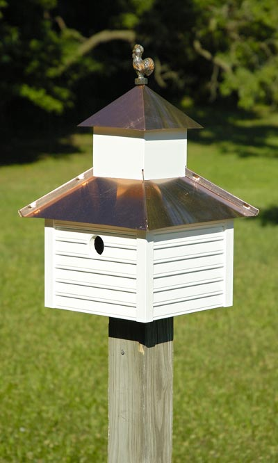 Heartwood Rusty Rooster Bird House, White/Bright Copper Roof