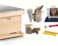 10 Frame Beginner Bee Hive Kit