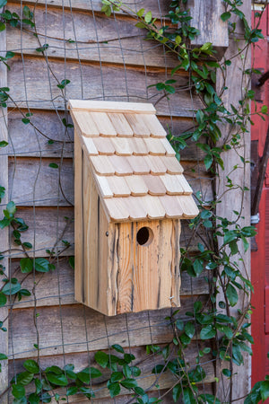 Heartwood Bluebird Bunkhouse Bird House