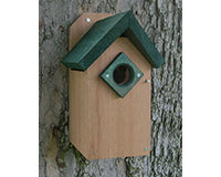 Songbird Essentials Bluebird House with Green Roof