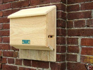 Coveside Sunshine Bat House-small