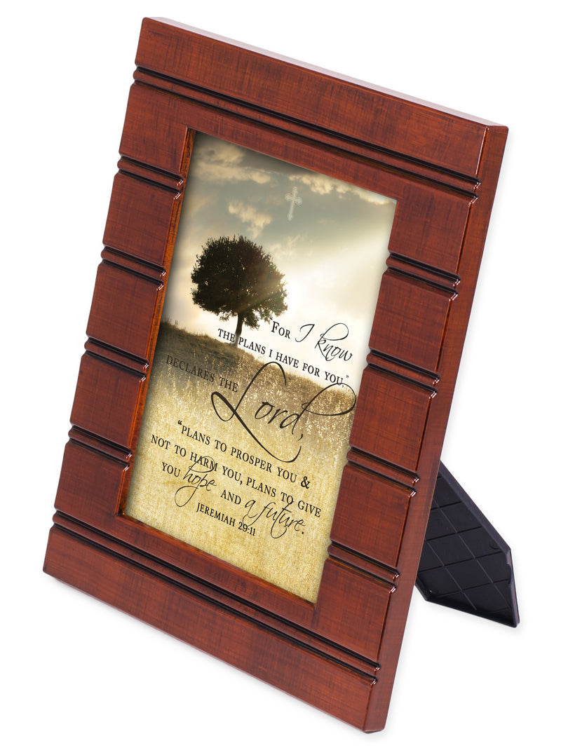For I know the Plans I Have For You Wood Finish 8 x 10 Sentimental Framed Art Plaque