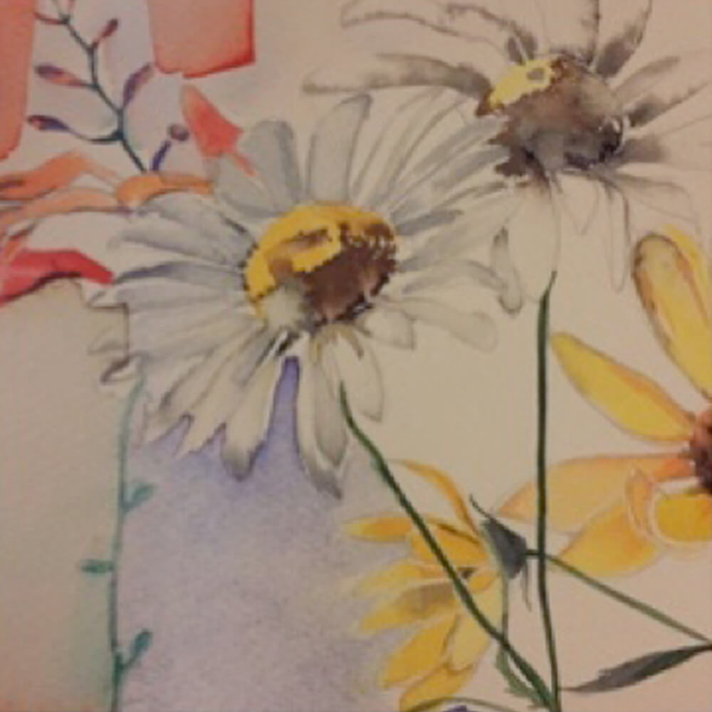 Daisies 1 - Greeting Card