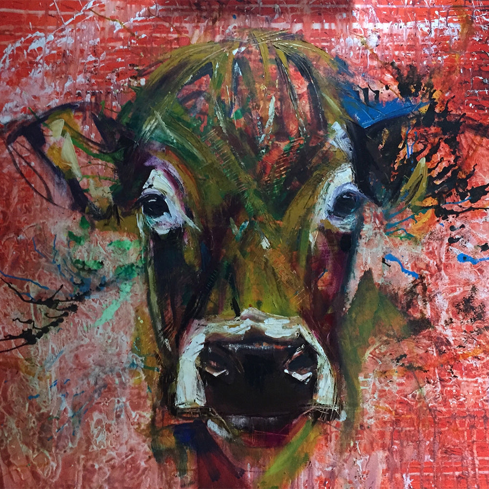 Irish Cow- Greeting Card