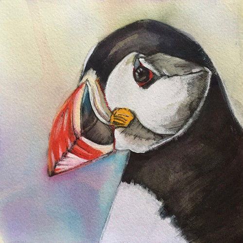 Puffin - Greeting Card