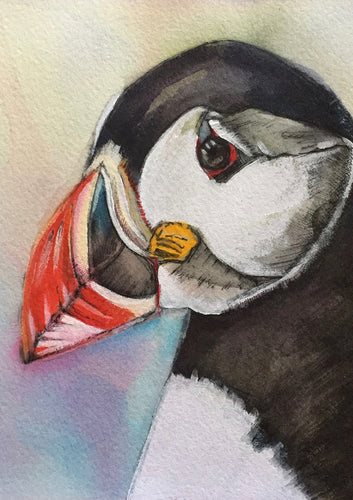 Puffin - Mounted Print
