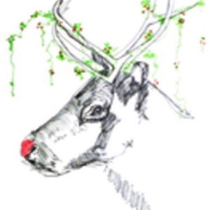 Reindeer 1 - Greeting Card