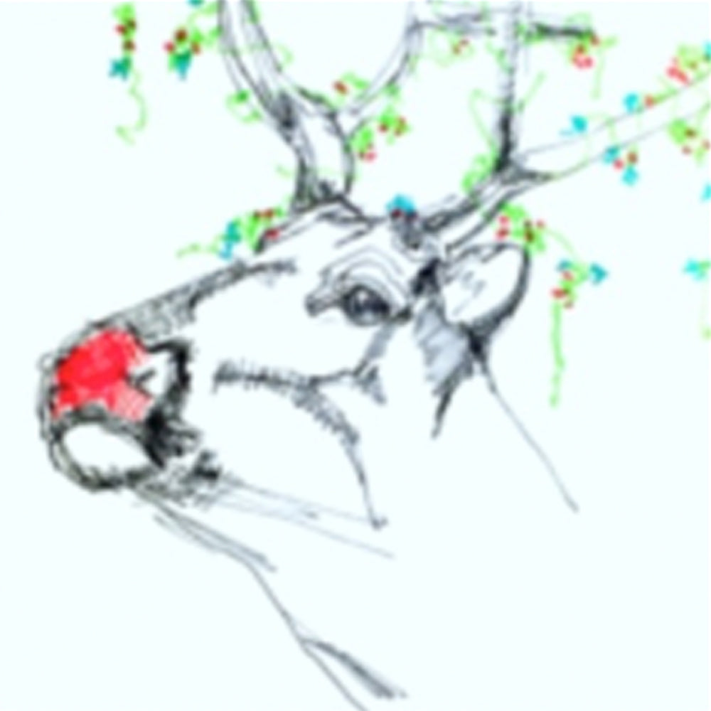 Reindeer 4 - Greeting Card