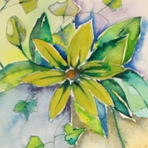 Yellow Clematis - Greeting Card