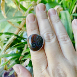 Condor Agate and Sterling Silver Ring
