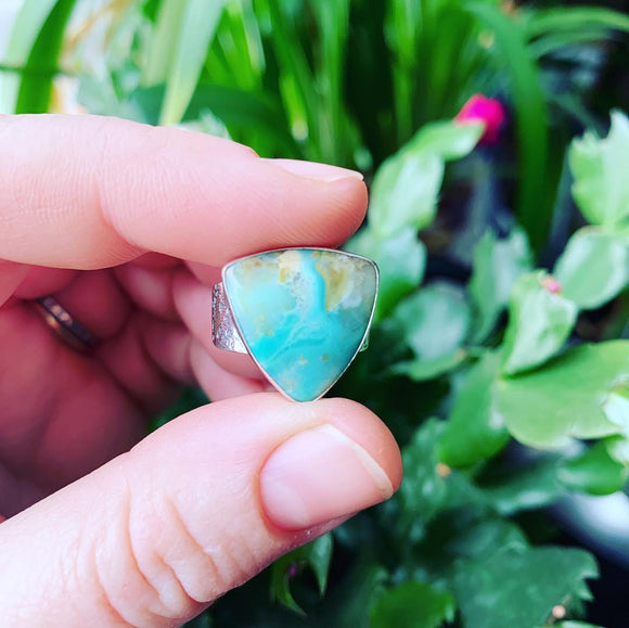 Opalized Wood and Sterling Silver Ring