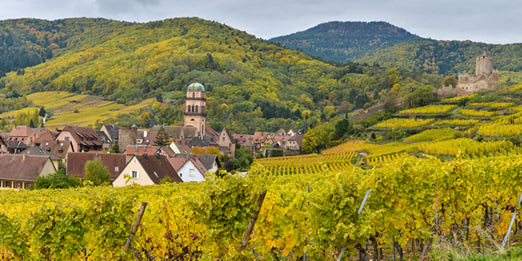 The village of Kaysersberg, France from the surrounding hills.
