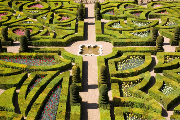 The gardens at Villandry in the Loire Valley.